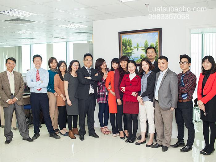 Công ty luật sở hữu trí tuệ Hình ảnh hoạt động