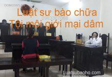 Luật sư bào chữa tội môi giới mại dâm