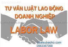 Tư vấn pháp luật lao động cho doanh nghiệp