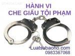 Quy định pháp luật về hành vi che giấu tội phạm