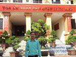 Văn phòng Luật sư tư vấn luật tại quận Long Biên, Hà Nội